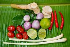 Тайский пряный суп, goong Tom yum стоковое изображение