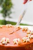Тайский торт слоя чая стоковые фото