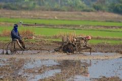 Тайский фермер Стоковая Фотография RF