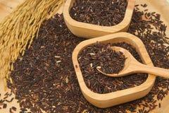 Тайский черный рис жасмина (ягода риса) Стоковое Фото