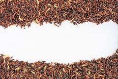 Тайский черный рис жасмина Стоковое Изображение