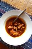 Тайское блюдо карри стиля Стоковая Фотография RF