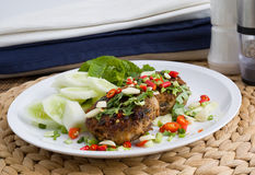 Тайское зажаренное пряное еды стоковые изображения rf