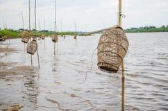 Тайское определение Стоковое Изображение