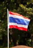 тайское флага национальное Стоковые Фотографии RF