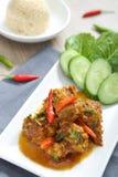 тайское цыпленка пряное Стоковая Фотография