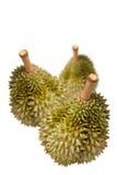тайское durian изолированное плодоовощ Стоковые Изображения RF