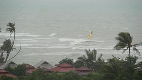 Тайфун Pabuk, берег моря океана, Таиланд Стихийное бедствие, ураган eyewall Сильный весьма ветер циклона пошатывает ладонь сток-видео