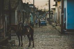 Такая же старая улица Куба Тринидад стоковое изображение