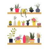 также вектор иллюстрации притяжки corel Полки с заводами и вазами цветков Стоковое Фото