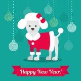 также вектор иллюстрации притяжки corel Пудель в пальто на фоне шариков рождества Изображение рождества для украшения год Стоковые Фотографии RF