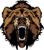 талисман головки гризли медведя графический Стоковая Фотография RF
