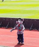 Талисман клуба футбола Terek на арене Akhmat танцует lezginka Стоковые Фото