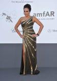 Тамара Ecclestone стоковое фото rf