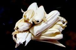 Тамале, мексиканская еда на день Candlemas Стоковое Изображение