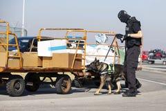 Таможни и офицер и собака предохранения от границы стоковое фото rf
