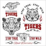 Таможня тигров едет на автомобиле логотип вектора футболки клуба на белой предпосылке Дикие животные - комплект вектора иллюстрация штока
