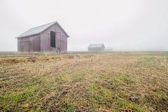 Там в тумане Стоковая Фотография RF
