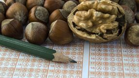 Там любое влияние человеческого мозга и грецкого ореха, грецкого ореха разума? Стоковые Фотографии RF