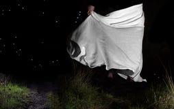 Танец звезд Стоковая Фотография