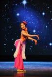 Танец диаграмм-лунного света национальности Dai Стоковое Изображение RF