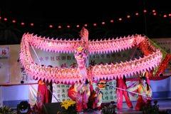 Танец дракона Стоковые Фото