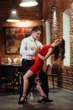 танцоры пар предпосылки танцуя детеныши запальчиво сальса белые Запальчиво сальса dan Стоковые Изображения RF