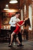 танцоры пар предпосылки танцуя детеныши запальчиво сальса белые Запальчиво сальса Стоковое Изображение RF