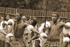 Танцоры Свази Стоковые Фотографии RF
