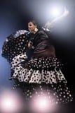 Танцор фламенко в движении Стоковая Фотография