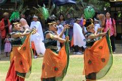 танцулька традиционная Стоковые Изображения RF