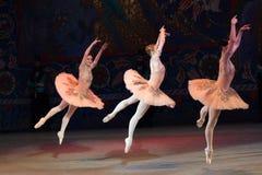 Танцы балерины артиста балета во время балета Corsar Стоковая Фотография