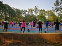 Танцы группы в парке стоковое фото rf