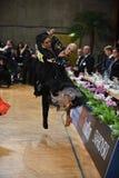 Танцы пар танца бального зала на конкуренции Стоковая Фотография RF