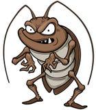 таракан Стоковые Изображения RF
