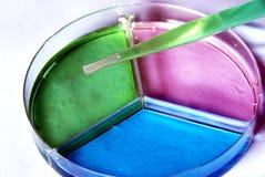 тарелка petri стоковое фото