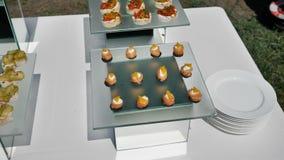 тарелки с рыбными блюдами с сыром и орехами для праздничного мероприят видеоматериал