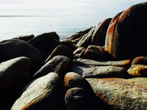 Тасмания Стоковое Изображение RF