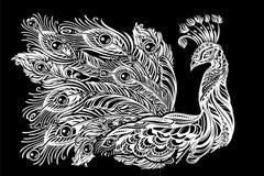 Татуировка павлина вектора Стоковое Изображение