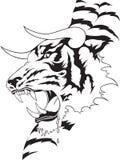 Татуировка тигра Стоковое Изображение