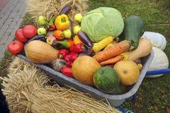 Тачка с овощами и яблоками Стоковые Фото