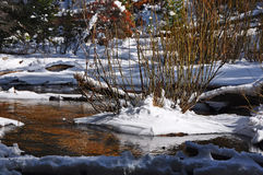 Таяние весны на Fall River Стоковые Изображения