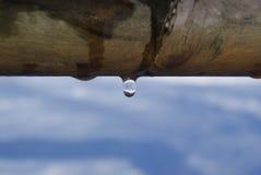 Таяние зимы Стоковая Фотография RF