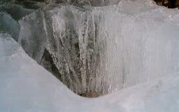 таяния весны льда утки Справочная информация Стоковое Изображение