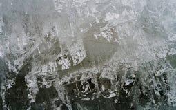 таяния весны льда утки Справочная информация Стоковая Фотография