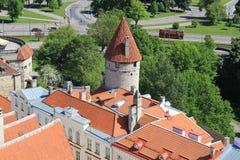 Таллин, capitel Эстонии, ywar 2014 Стоковое Изображение