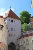 Таллин, capitel Эстонии, ywar 2014 Стоковое Изображение RF