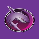 Талисман акулы эмблемы Стоковая Фотография RF