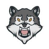 Талисман волка головной Стоковые Фото