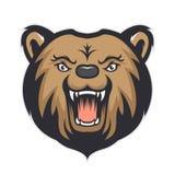 Талисман медведя головной Стоковое Фото